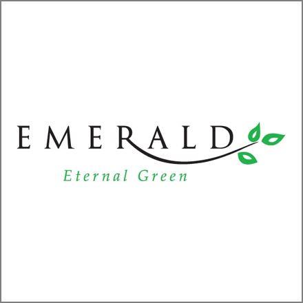 Emerald Eternal Green