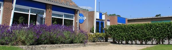 (c) Dsvp.nl
