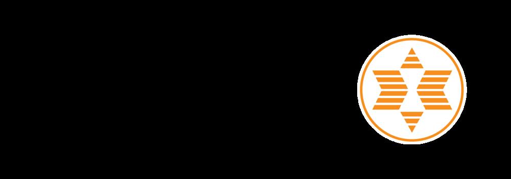 expert-logo-black.png