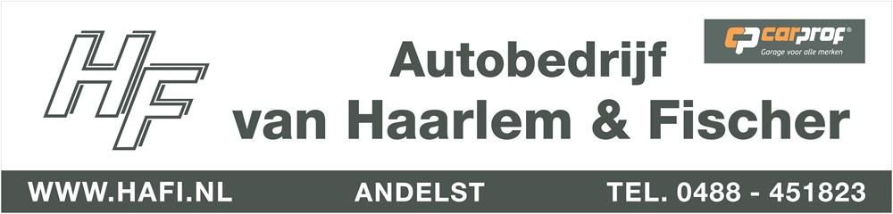 van_Haarlem__Fisher_bord.jpg