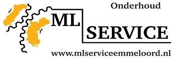 ml_service.JPG