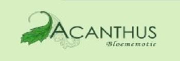 acant.jpg