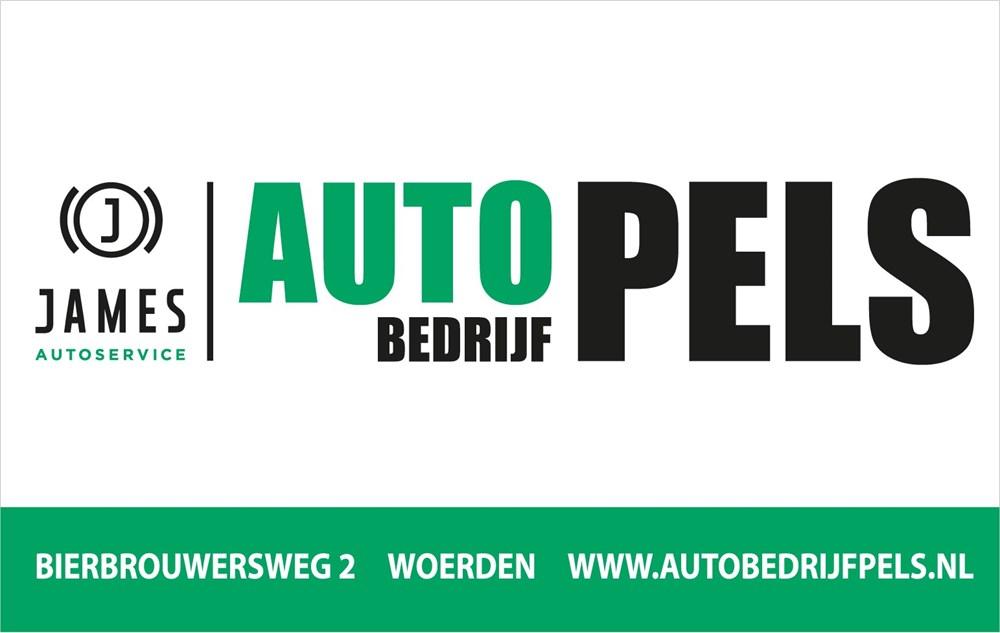 Autobedrijf_Pels.jpg
