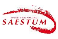 saestum_logo.jpg