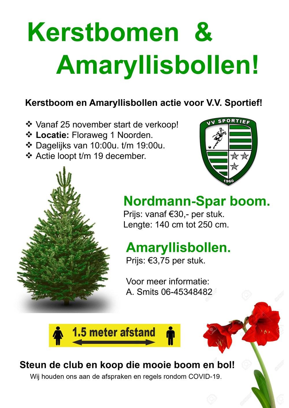 Flyer_Kerstbomen__Amarylissbollen.jpg