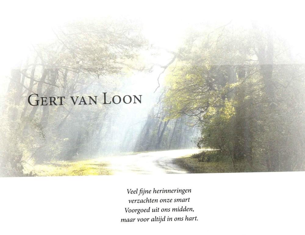 Loon-4.jpg
