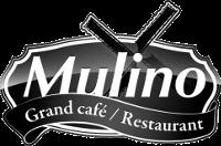 Mulino_de_wijk.png
