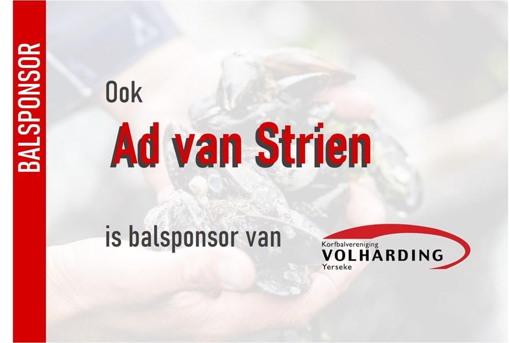 BS-advanstrien_a5.jpg