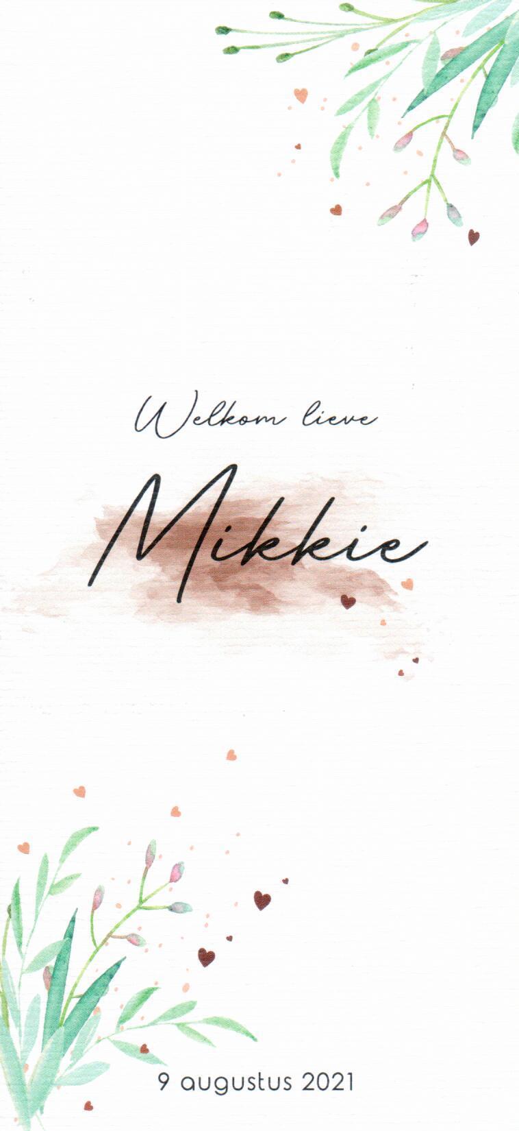 Willian_-_Mikkie_1.png